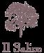 il salice goroup logo